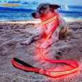 Premium USB Rechargeable Led Glow Dog Leash