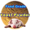 Tierfutter-Hefe-Pulver mit Professinal