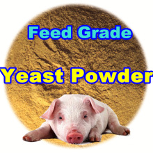 Animal Feed Yeast Powder con Professinal