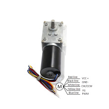 Brushless DC Electric Motor With Worm Gearbox