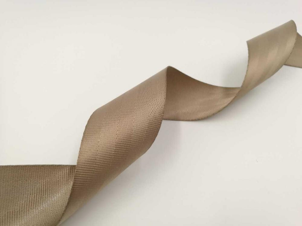 Polyester Webbing Tape (3)
