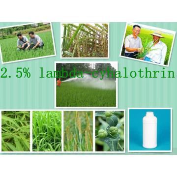 Hot Used Pesticide, Lambda-Cyhalothrin