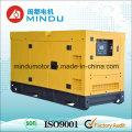 Hohe Qualität 300kVA Yuchai Diesel Power Generator