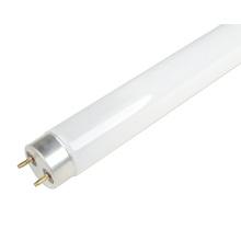 ES-T8-Fluorescent Tube