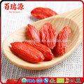 Goji berry extract what is a goji berry pianta di goji
