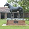 Высокое качество бронзового вздыбленного коня скульптура