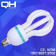 Energy Saving DSC_7908