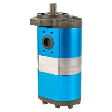 DONEX external double gear pump