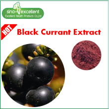 Extracto natural de Ribes Nigrum