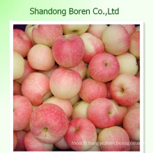 Gala Apple Fresh Fruit China Apple Export Manufacturer