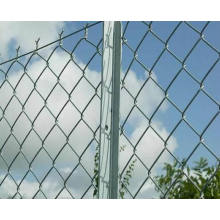 Verzinkter Kettenglied Zaun / Diamond Wire Mesh
