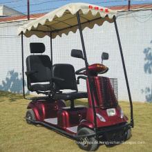 Mobilität für Elektroroller mit zwei Sitzen und Dach verfügbar (DL24800-4)