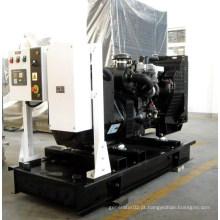 Geradores de diesel Lovol de grande capacidade (150kVA, HF120L1)