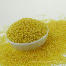 Organic high quality glutinous yellow millet Xiaomi 2016 yellow millet hulled