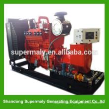Générateur électrique à gaz de qualité fiable avec une marque de renommée mondiale