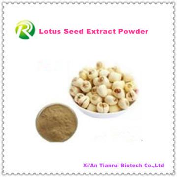 Polvo de alta calidad de la semilla del loto del extracto de la planta 100% natural