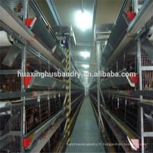 Maison de poulet / cage de volaille