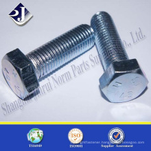 Hot Dipped Galvanized hex screw
