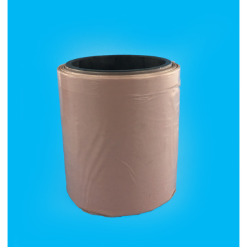 Phim Ptfe trong suốt
