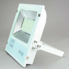LED Flood Light LED Flood Lamp 100W Lfl1710