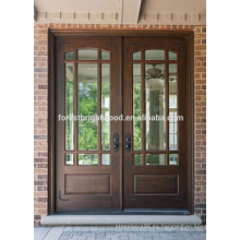 Diseño de la India de estilo tradicional Diseño de la puerta de madera de Malasia con vidrio para Villa