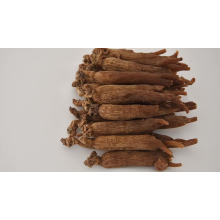Hot Sale Natural Fried Chinese Herbal Medicine Herbal Red Ginseng
