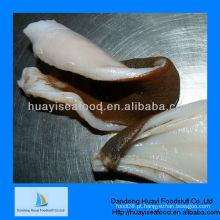 Alta qualidade geoduck clam