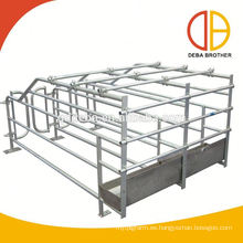 Nuevo diseño Gestation Stall