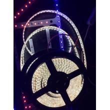 3528 Standard DC12V LED Strip Light