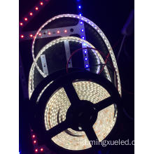 3528 Lampu LED Strip DC12V Standar