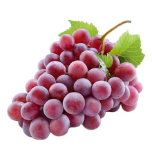 Hot Selling Lowest price China Fresh Fruit Vitamin Rich Red Globe Grape