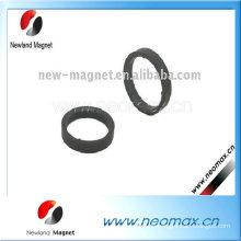 Permanentmagnet Motor