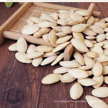 precio de mercado de las semillas de calabaza