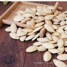 preço de mercado de sementes de abóbora