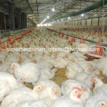 Équipement complet de volaille réglé de haute qualité pour la ferme de volaille