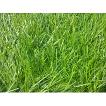 50mm Artificial Grass for field