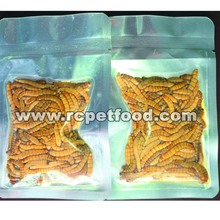 Eco fresh mealworm for pet food