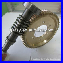 Precision worm gear for reducer