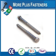 Made in Taiwan External Stainless Steel Galavanized Zinc Hex Head Lag Bolt