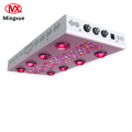 Lente Óptica Ajustável Led Full Spectrum Grow Light