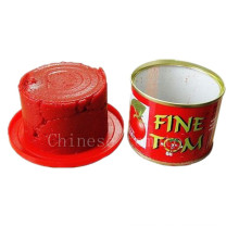 Tomato Paste in Health Canned Food-Manufacturer