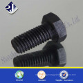Hex Bolt with Black Surface