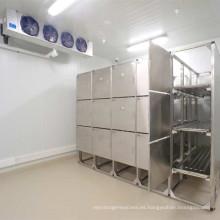 Sala de enfriamiento congelada profesional para la comida