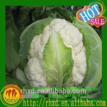 Высокое качество свежее органическое цветная капуста VGCF001