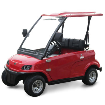 Ce Approved 2 Seater Low-Speed Electric Car (DG-LSV2)