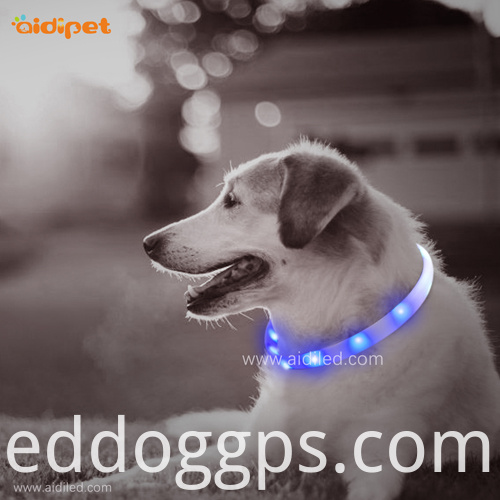 Night Safty LED Pet Collars
