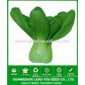 JPK11Heliu Early mature chinese hybrid pakchoi seeds f1 for sales