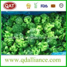 Brócoli congelado IQF