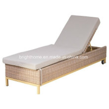 Outdoor Furniture Modern Rattan Garden Wicker Lounge (BM-573)