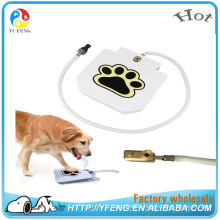 New Products Innovative Product Dog Water Fountain
